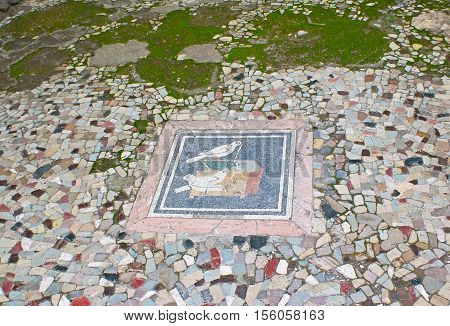 POMPEII ITALY - OCTOBER 4 2012: The stone mosaic on the floor of atrium of Hause of Faun depicts the doves at the jewelry box with pearl beads on October 4 in Pompeii.