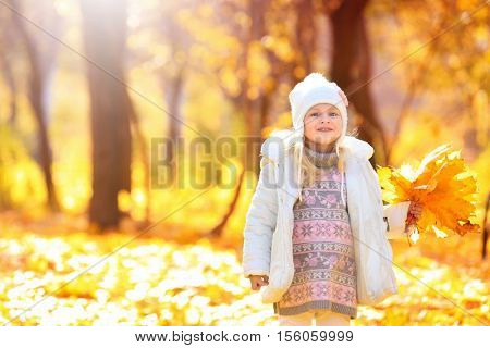 Cute little girl gathering leaves in autumn park on sunny day