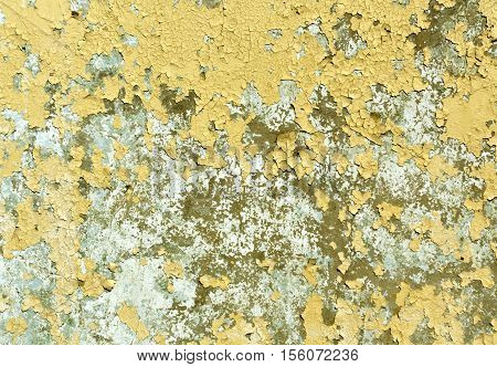 Yellow Weathered Grungy Wall Texture.