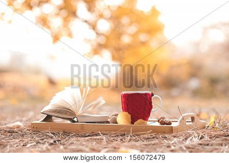 Knitted cup of coffee staying with open book on wooden tray outdoors over autumn nature background. Seasonal.