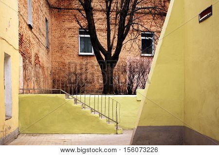 Old Yard With Tree And Brick Wall.
