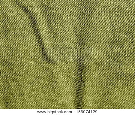 Yellow Color Cotton Canvas Pattern.