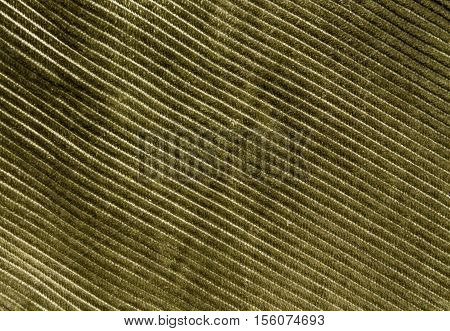 Yellow Color Cloth Texture With Pattern