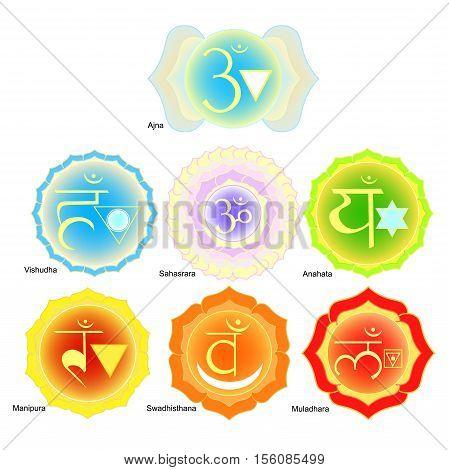 Indian Chakra Is Set Color Vector Illustration