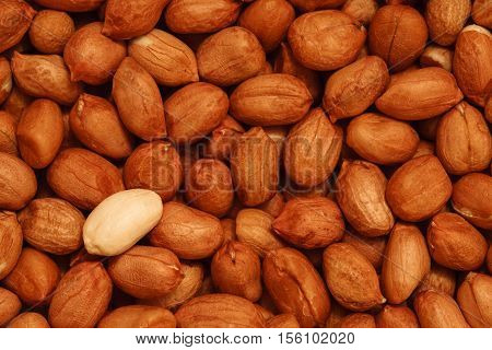 dry peanut photo, raw red groundnut background