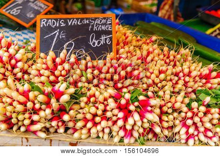 Radish On Sale In A French Market