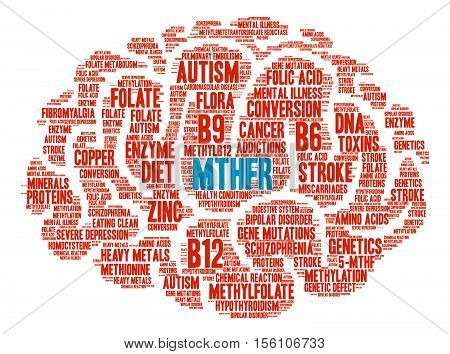MTHFR Brain word cloud on a white background.