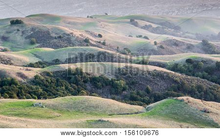 california rolling hills and silicon valley background. classic california rolling hills with scattared oak trees at mission peak, alameda county.