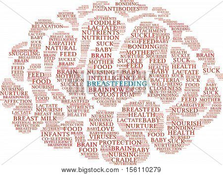 Breastfeeding Brain Word Cloud