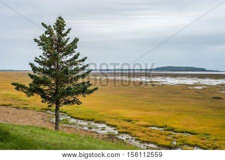 Low tide at Kamouraska, Bas Saint Laurent, Quebec, Canada