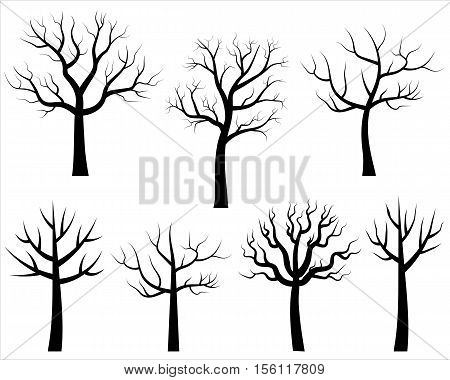 Vector bare tree silhouettes, Black trees without leaves in cartoon style
