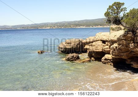Mediterranee sea landscape and trees near bandol France