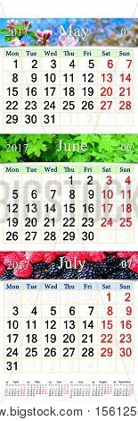 office calendar for three months May June and July 2017 with pictures of nature