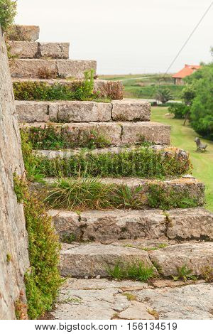 Fragment of an ancient stone ladder overgrown with a grass. A ladder on the street a close up. Against the background of the rural house and a lawn