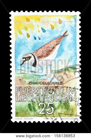 LIECHTENSTEIN - CIRCA 1989 : Cancelled postage stamp printed by Liechtenstein, that shows Little Ringed Plover.