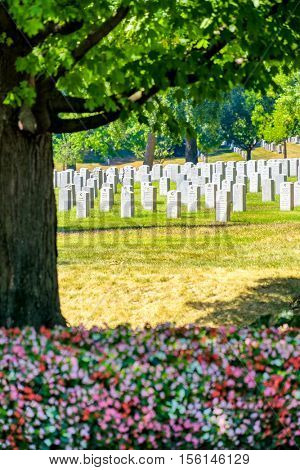 WASHINGTON D.C.,USA - AUGUST 15,2016 : Tombstones and flowers at the Arlington National Cemetery in Virginia near Washington D.C.