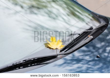 season and transport concept - close up of car wipers with autumn maple leaf on windshield
