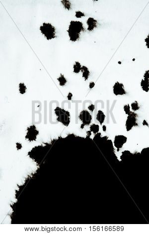 Black Ink Conveyed Over White Close-up Paper. Abstract Background isolated on white background. Ink Stains Spread Out and Absorbed Into the Paper Macro.