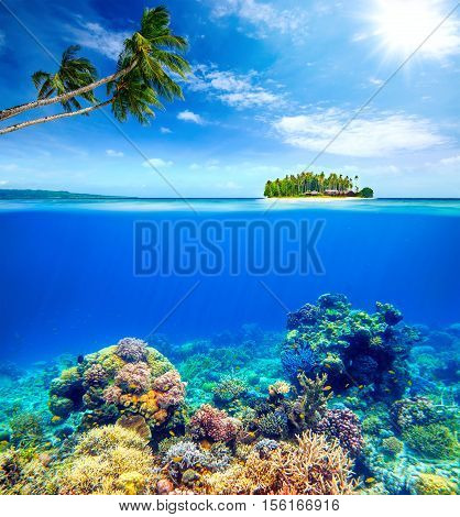 Beautiful Coral reef with fish on the background of small island to the hotel