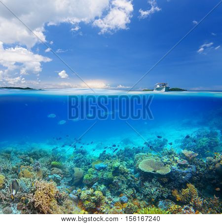 Beautiful Coral reef on background blue sky and islands.