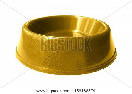 Cat , dog rodent feeding gold bowl, isolated on white background