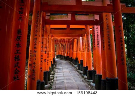 Torii Is Traditional Japanese Gates Fushimi Shrine