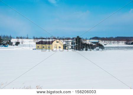 Blue Sky In Winter Rural Landscape At Hokkaido.