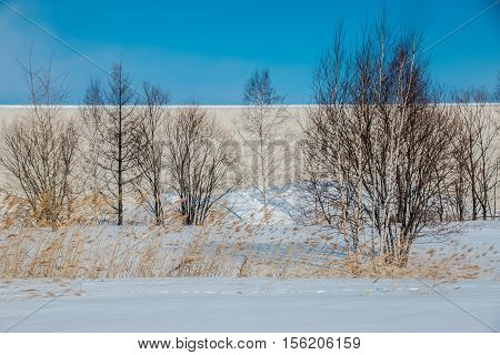 Blue Sky In Winter Rural Landscape At Hokkaido.