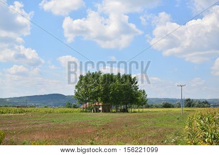 Lonesome old peasant house surrounded by few trees in central Serbia
