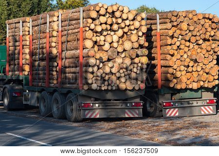 Trucks loaded with tree trunks along the roadside in front of a blue sky