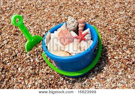 Looking for shells at the beach in a bucket poster