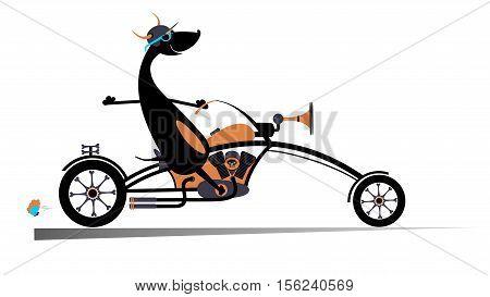 Biker dog. Biker, motorcycle, dog, vector, illustration