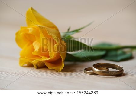 yellow rose and wedding rings lie on a table