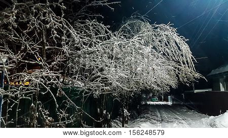 Freezing Rain Night. Outside The City All The Trees Are Covered With A Layer Of Ice. You Can Use As