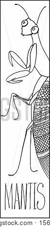 Doodle mantis outlined vector illustration. Cute Mantis insect doodle ink drawing. Mantis vector illustration for coloring or bookmark. Mantis vector coloring page. Doodle insects on white background