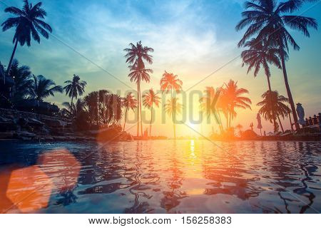 Palm trees reflection in the water on a tropical seaside during sunset.