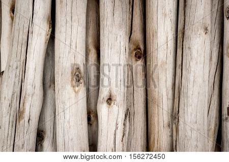 stack of firewood background. firewood texture. firewood backdrop