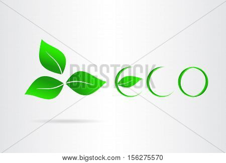 Eco icon whit green leaf. Vector illustration.