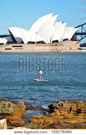 Australian Man Paddle Board In Sydney Harbour Sydney  New South Wales Australia