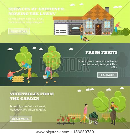 Vector banners of garden activities. Take care of the garden, mowing lawn, picking fruits, harvesting vegetables from garden patch. Gardening, agriculture and horticulture. Flat design