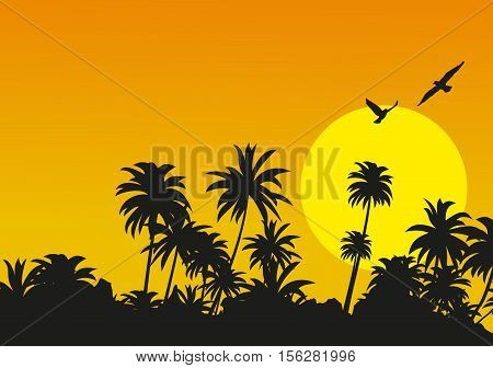 Sunset in the tropical mountains. Vector illustration.