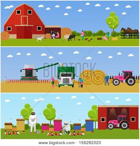 Vector banners of village life. Farming and cattle breeding, harvesting wheat and beekeeping. Agriculture, village activities. Flat design
