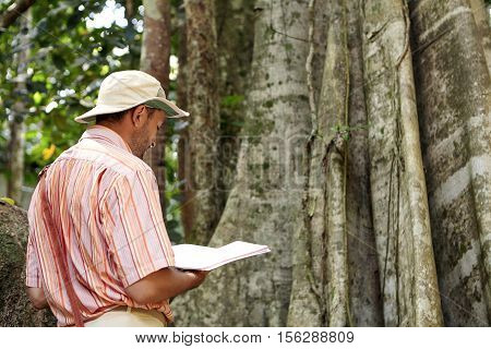 Back View Of Male Biologist Or Botanist Wearing Hat And Shirt Stnanding In Front Of Gigantic Tree Wi