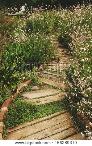 the path of the old wooden planks sitting among the white flowers of nowhere abstract background