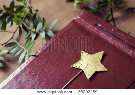 Magic star wand on a leather notebook surrounded by fresh green leaves.