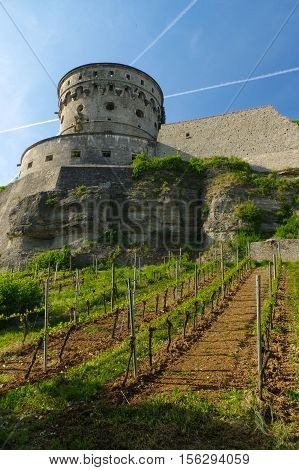WURZBURG GERMANY - MAY 11 2015: view of the Marienberg Fortress or Festung in Autumn with vineyard in front Germany