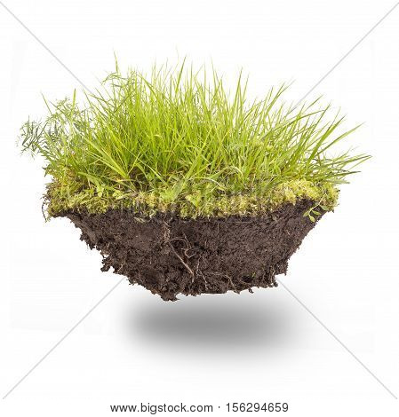 green grass with earth isolated on white background