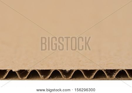 The cut corrugated cardboard structure close up  isolated on white