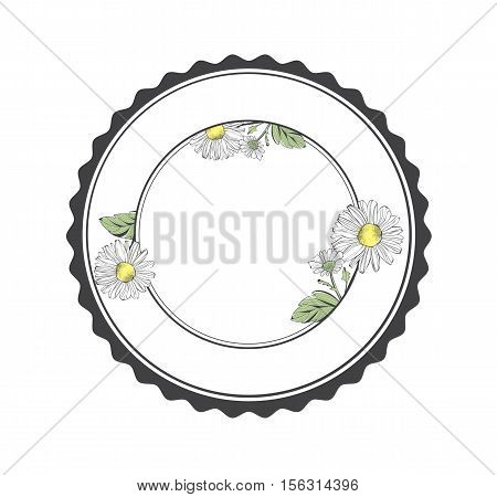 Daisy Flower Round Frame With Copyspace Over White