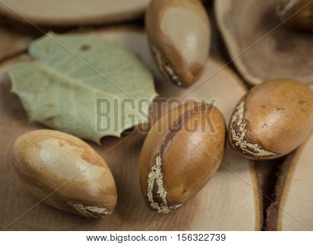 Moroccan argan nuts on wooden background close-up shot